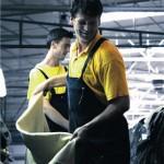 Prevent Leather po najvišim svjetskim standardima