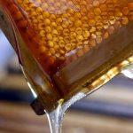 U Evropu uvezeno 80 hiljada tona meda iz Kine