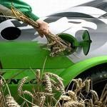 EU najavila smanjenje upotrebe biogoriva