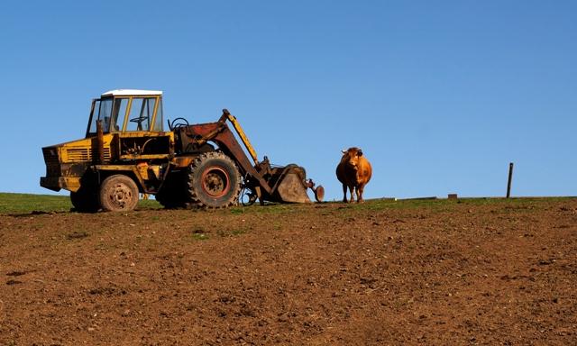 Primjena adaptiranog SSP-a grobar domaćeg agrara
