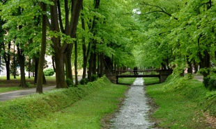 Vrnjačka banja 145 godina lider banjskog turizma