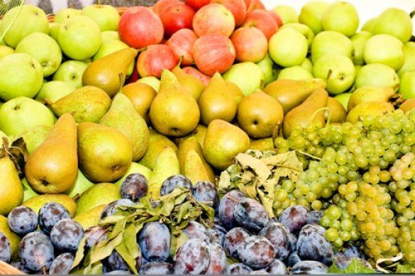 Посол Казахстана: Сербия интересна как экспортер фруктов