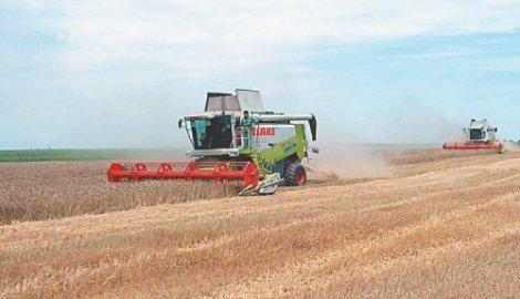 Iskoristiti IT sektor za razvoj poljoprivrede