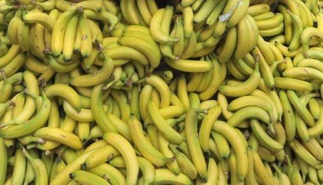 Opasna bolest napala banane, tržište ugroženo