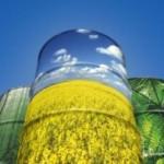 EU ograničava korišćenje biogoriva