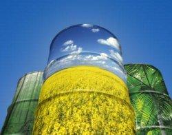 Prestati sa proizvodnjom biogoriva