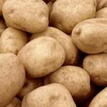 Krompir domaći, ali skup