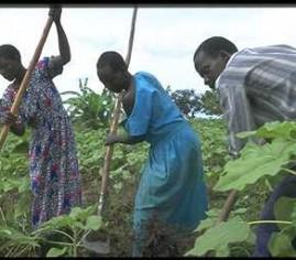 Podrška poljoprivredi afričkih umjetnika