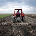 Vremenski uslovi ne pogoduju poljoprivrednim kulturama