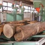 U trećem kvartalu smanjena proizvodnja šumskih sortimenata za 14 odsto