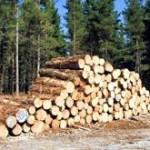 Potpisano 67 ugovora o isporuci drvnih sortimenata