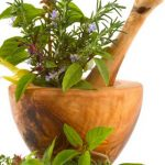Pojačano interesovanje za uzgoj ljekovitog i aromatičnog bilja