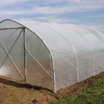 Povrtlari dobili plastenike