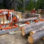 Povećan izvoz drvne industrije BiH