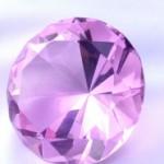 Progutao dijamant vrijedan 20.000 dolara