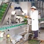 Proizvodnja i izvoz ne prestaju da padaju