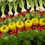 U Srbiji samo 1% hrane proizvodeno kao organska