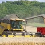 Na području Semberije žetva pšenice pri kraju