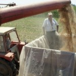 Završena žetva pšenice u opštini Kotor Varoš