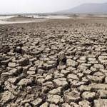 Knežević: Utvrditi štetu od suše