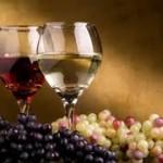 """Održan """"Dan mladog vina"""""""