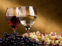Kod Prokuplja se gradi najveća vinarija na Balkanu