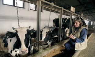 Poziv za rad na farmama u Lihtenštajnu