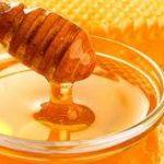 U Brčkom otvoren Sajam meda
