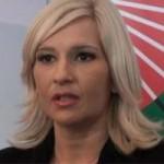 Mihajlović: Bez poskupljenja struje do Nove godine
