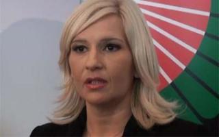 Mihajlović: Revizija svih energetskih dozvola