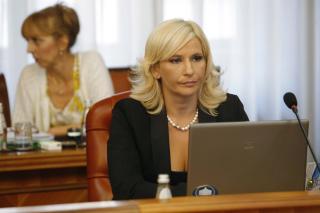 Mihajlović: Smanjićemo broj agencija i fondova