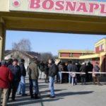 """Domić: Ispitati proces privatizacije preduzeća """"Bosnaplod"""""""