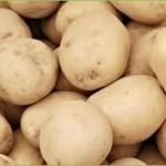Izvoz krompira u EU – rezultat rada svih nadležnih u BiH