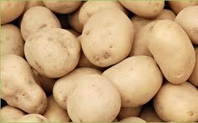 Zabranjen uvoz 23 tone sjemenskog krompira