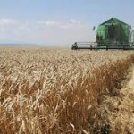 U EU samo 5 odsto poljoprivrednika