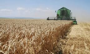 Veliko interesovanje Afričke unije za srpski agrar