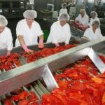U BiH najviše radnika zaposleno u prerađivačkoj industriji