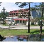 Projekat banjsko-turističkog centra na Vilinoj vlasi