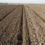 U toku analiza poplavljenog poljoprivrednog zemljišta u Srbiji