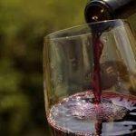 Darel Jozef u vinskim podrumima Srpske