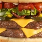 Konjsko meso u goveđim burgerima