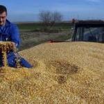 Puno poljoprivrednika, ali skromni rezultati