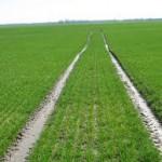 Nije usvojen Program podsticaja za poljoprivredu