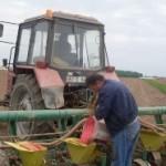 Kiše pripremile zemljište za jesenju sjetvu