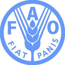 FAO: Poplave u Srbiji nanjele preko 2,8 miliona dolara štete poljoprivrednicima