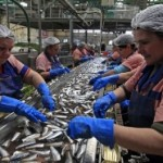 Veće kvote za ribu, vino i šećer