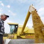 Danas sastanak o otkupu pšenice