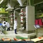 """Pripreme za obnovu proizvodnje u """"Diti"""""""