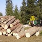 Od prodaje drvnih sortimenata u Han Pijesku 890.000 KM