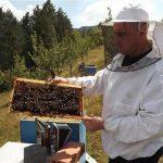 Novčani podsticaji pčelarima iz Višegrada